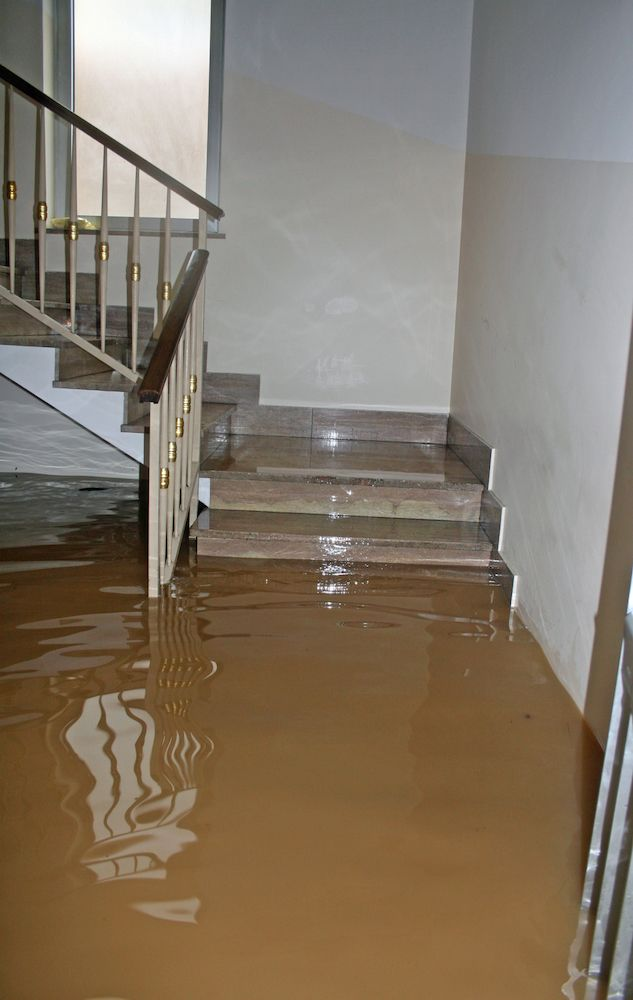 A flooded stairwell.
